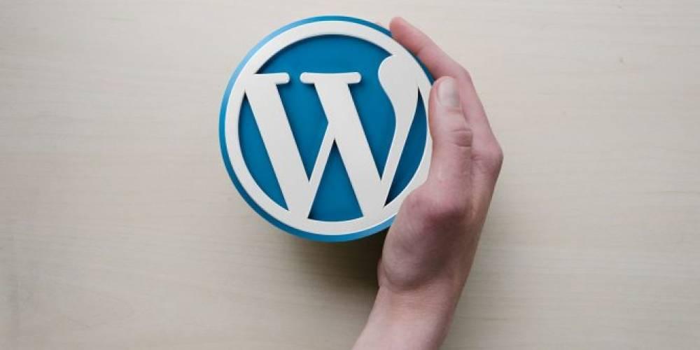 WordPress Nedir? WordPress Ne İşe Yarar?